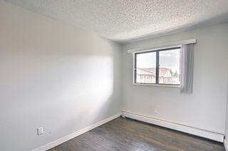 Photo 23: 4302 13045 6 Street SW in Calgary: Canyon Meadows Apartment for sale : MLS®# A1116316