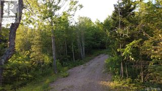 Photo 4: - Armstrong Crescent in St. George: Vacant Land for sale : MLS®# NB025701