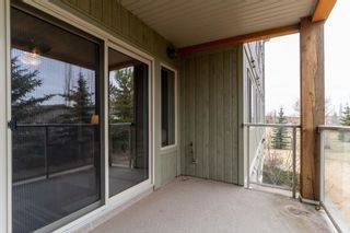 Photo 30: 214 278 SUDER GREENS Drive in Edmonton: Zone 58 Condo for sale : MLS®# E4241668