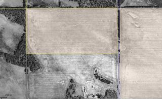 Photo 3: 254 TWP 610: Rural Westlock County Rural Land/Vacant Lot for sale : MLS®# E4191915