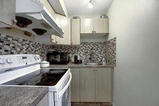 Photo 28: 208 Taradale Drive NE in Calgary: Taradale Detached for sale : MLS®# A1067291