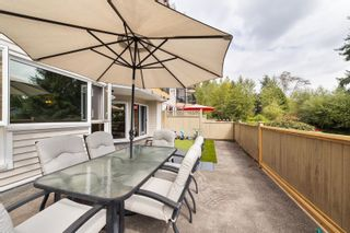 """Photo 13: 112 11595 FRASER Street in Maple Ridge: East Central Condo for sale in """"BRICKWOOD PLACE"""" : MLS®# R2611316"""