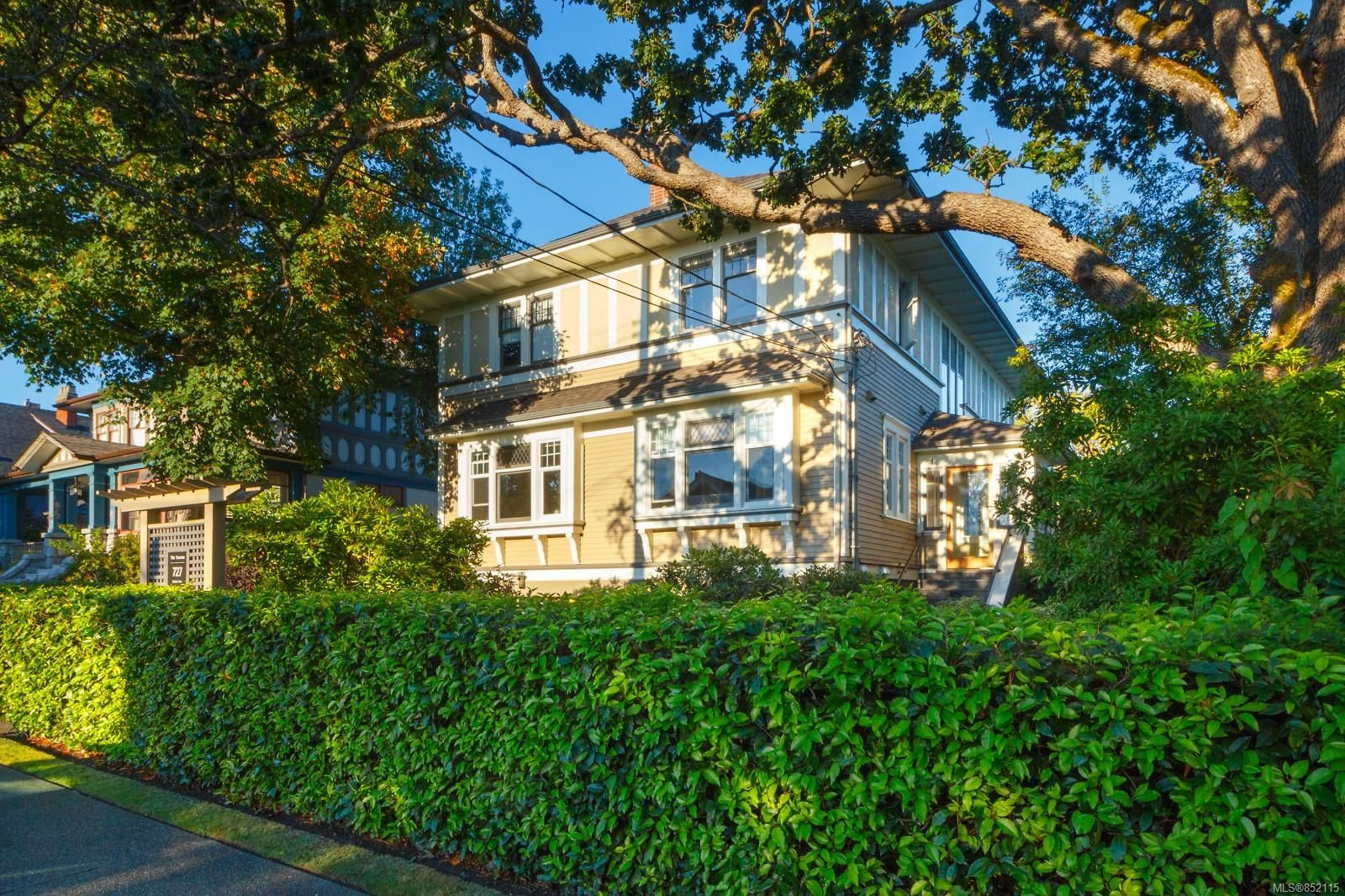 Main Photo: 3 727 Linden Ave in : Vi Fairfield West Row/Townhouse for sale (Victoria)  : MLS®# 852115