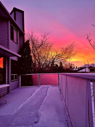 Photo 39: 311 Scenic Glen Bay NW in Calgary: Scenic Acres Detached for sale : MLS®# A1082214