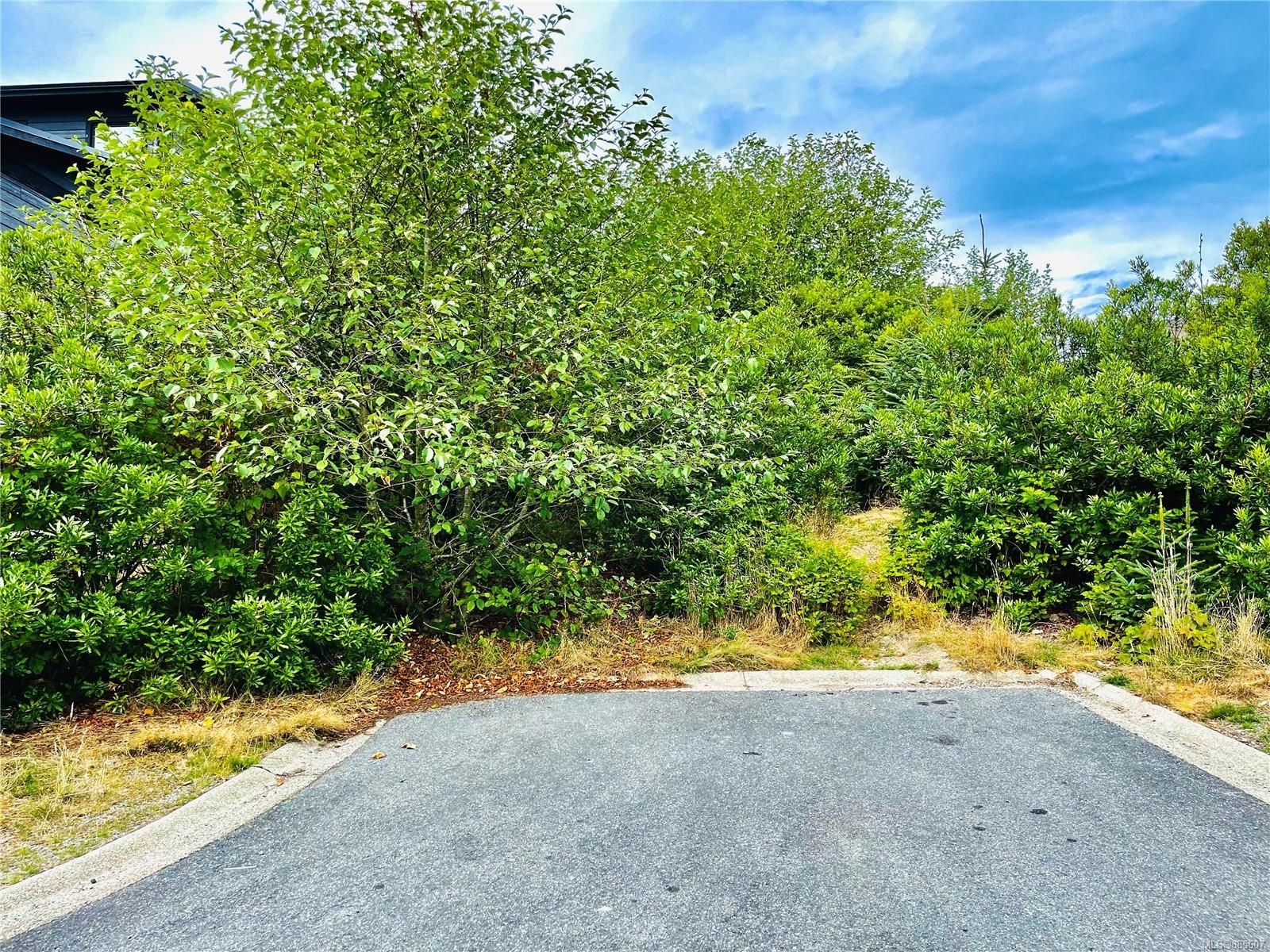 Main Photo: Lot 24 Pass Of Melfort Pl in : PA Ucluelet Land for sale (Port Alberni)  : MLS®# 885607