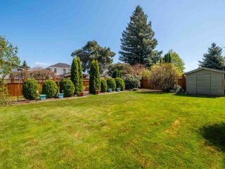 Photo 32: 4516 217A Street in Langley: Murrayville House for sale : MLS®# R2570732