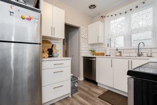 Photo 16: 113 Eugenie Street in Winnipeg: Multi-family for sale (2B)  : MLS®# 202028339