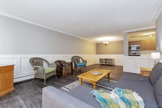 """Photo 6: 108 12170 222 Street in Maple Ridge: West Central Condo for sale in """"Wildwood Terrace"""" : MLS®# R2537908"""