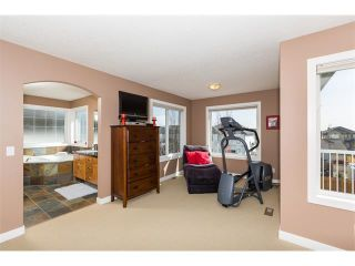 Photo 20: 241 Springmere Way: Chestermere House for sale : MLS®# C4005617