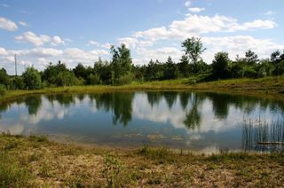 Photo 13: 475547 County Road 11 in Amaranth: Rural Amaranth Property for sale : MLS®# X4667613