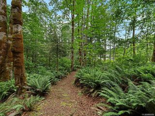 Photo 36: Lot 2 Eagles Dr in : CV Courtenay North Land for sale (Comox Valley)  : MLS®# 869395