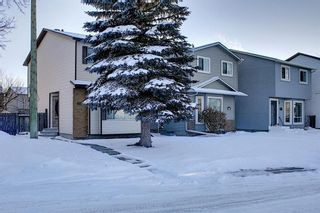 Photo 42: 148 Martinbrook Road NE in Calgary: Martindale Detached for sale : MLS®# A1069504