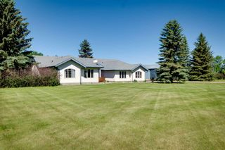 Photo 8: 54518 RGE RD 253: Rural Sturgeon County House for sale : MLS®# E4244875