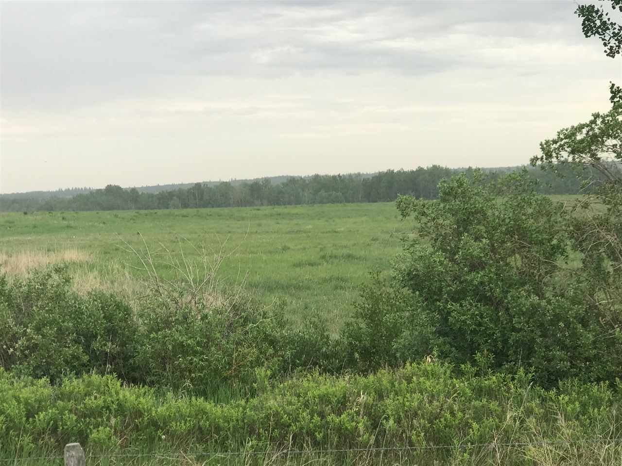 Main Photo: TWP 580 Rg Rd 240: Rural Sturgeon County Rural Land/Vacant Lot for sale : MLS®# E4248027