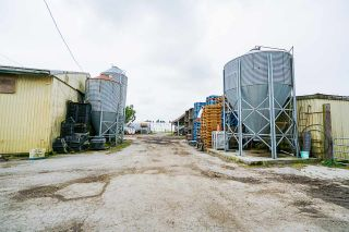 Photo 18: 17731 WESTMINSTER Highway in Richmond: East Richmond Agri-Business for sale : MLS®# C8035442