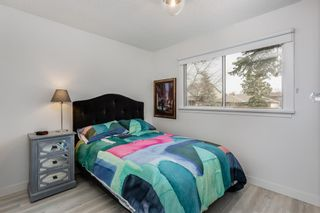 Photo 8: 2439 22A Street NW in Calgary: Banff Trail Detached for sale : MLS®# A1135055