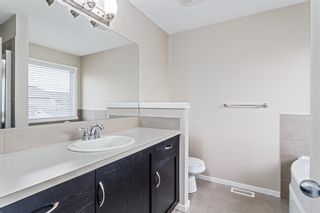 Photo 14: 25 BRIGHTONCREST Rise SE in Calgary: New Brighton Detached for sale : MLS®# A1110140