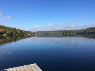 Photo 3: 1336 Grace River Road in Dysart et al: House (Bungalow) for sale : MLS®# X4560931