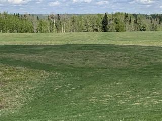 Photo 7: 53000 Range Road 73: Rural Parkland County Rural Land/Vacant Lot for sale : MLS®# E4202767