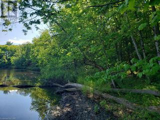 Photo 9: 8801 SEVERN RIVER in Orillia: Vacant Land for sale : MLS®# 40120545
