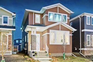 Photo 35: REDSTONE PA NE in Calgary: Redstone House for sale
