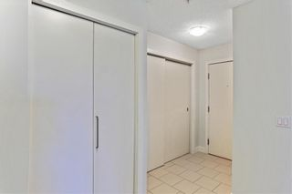 Photo 16: 315 35 RICHARD Court SW in Calgary: Lincoln Park Apartment for sale : MLS®# C4188098