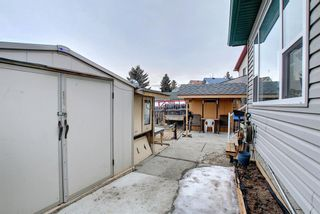 Photo 40: 813 Applewood Drive SE in Calgary: Applewood Park Detached for sale : MLS®# A1076322