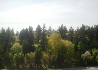 """Photo 16: # 1901 11 E ROYAL AV in New Westminster: Fraserview NW Condo for sale in """"VICTORIA HILL HIGH RISES"""" : MLS®# V1002340"""