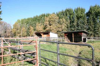 Photo 9: RR 220 And HWY 18: Rural Thorhild County House for sale : MLS®# E4227750
