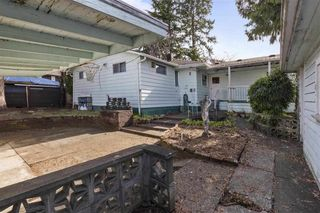 Photo 12: 3133 E 19TH Avenue in Vancouver: Renfrew Heights House for sale (Vancouver East)  : MLS®# R2549145