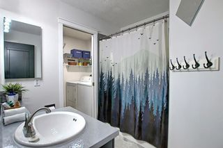 Photo 27: 66 Erin Green Way SE in Calgary: Erin Woods Detached for sale : MLS®# A1094602