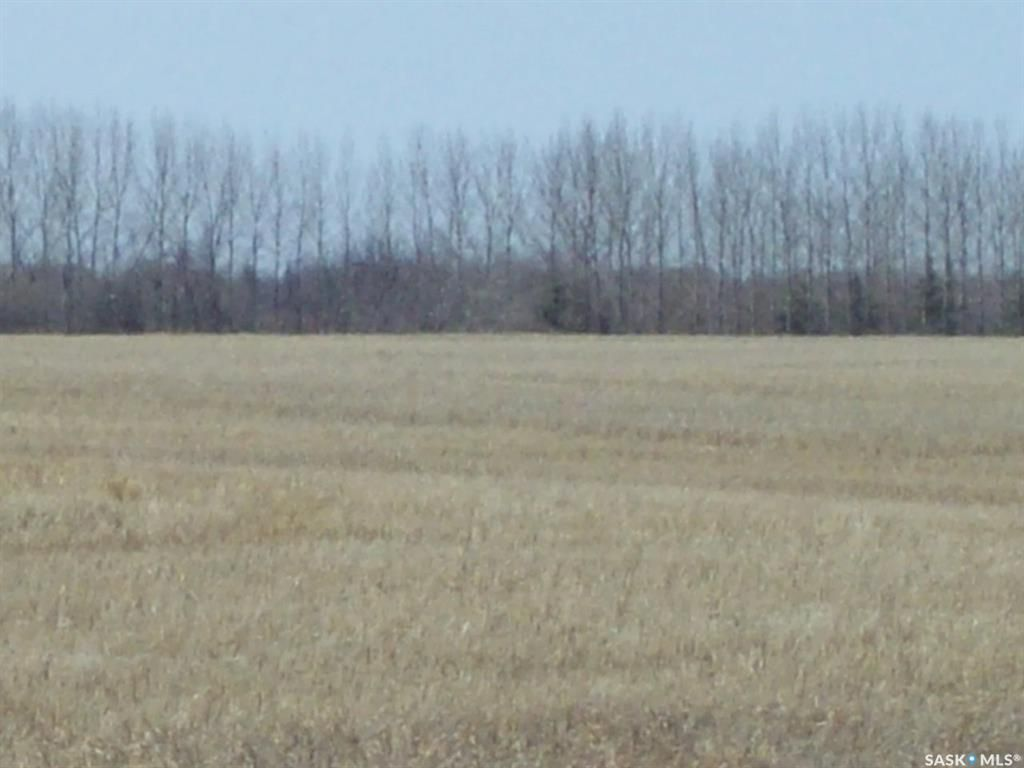 Main Photo: #5. Richardt Grasswood in Grasswood: Farm for sale : MLS®# SK851004