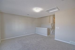 Photo 17: 14 HILLCREST Street SW: Airdrie Detached for sale : MLS®# A1031272