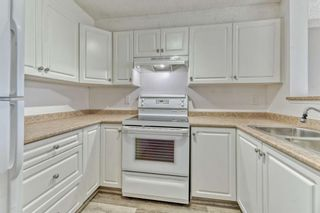 Photo 8: 337 1717 60 Street SE in Calgary: Red Carpet Apartment for sale : MLS®# A1067174