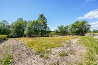 Photo 32: 21.44AC 240 STREET in Langley: Langley City Agri-Business for sale : MLS®# C8038637