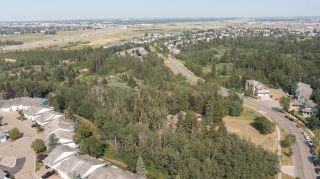 Photo 22: 40 BLACKBURN Drive W in Edmonton: Zone 55 House for sale : MLS®# E4266018