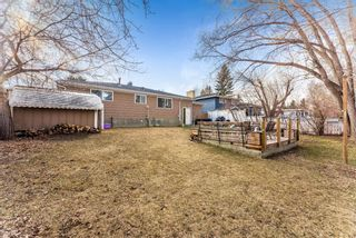 Photo 18: 10744 Mapleshire Crescent SE in Calgary: Maple Ridge Detached for sale : MLS®# A1094233