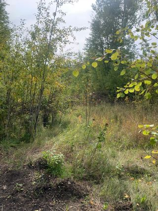 Photo 3: 54419 Range Rd. 14: Rural Lac Ste. Anne County Rural Land/Vacant Lot for sale : MLS®# E4263343