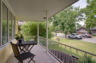 Photo 38: 3531 35 Avenue SW in Calgary: Rutland Park Detached for sale : MLS®# A1059798