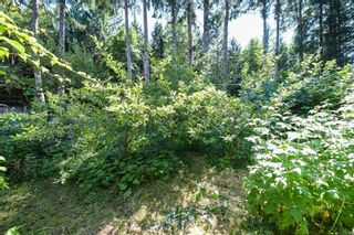 Photo 92: 410 Ships Point Rd in : CV Union Bay/Fanny Bay House for sale (Comox Valley)  : MLS®# 882670