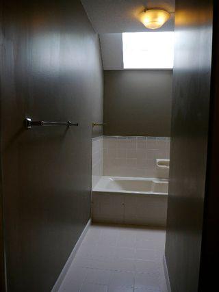 Photo 8: 2338 West 6th Avenue in Magnolia: Kitsilano Home for sale ()  : MLS®# V955629