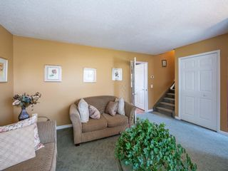 Photo 22: 223 Tanner Drive SE: Airdrie Detached for sale : MLS®# A1101335