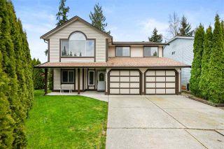 Photo 1: 23998 119B Avenue in Maple Ridge: Cottonwood MR House for sale : MLS®# R2558302