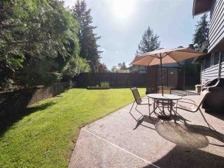 Photo 19: 19749 N WILDWOOD CRESCENT in Pitt Meadows: South Meadows House for sale : MLS®# R2338801