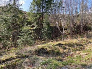 Photo 2: LOT 15 Spruce St in : CR Campbell River Central Land for sale (Campbell River)  : MLS®# 871743