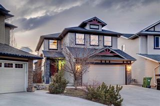 Photo 49: 155 CHAPALINA Mews SE in Calgary: Chaparral Detached for sale : MLS®# C4247438