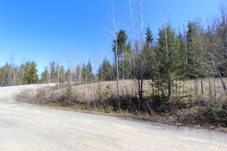 Photo 5: Lot 11 Ivy Road: Eagle Bay Vacant Land for sale (South Shuswap)  : MLS®# 10229941