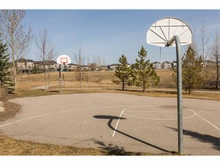 Photo 35: 241 Springmere Way: Chestermere House for sale : MLS®# C4005617