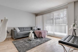 Photo 7: 103 920 Royal Avenue SW in Calgary: Lower Mount Royal Apartment for sale : MLS®# A1088426