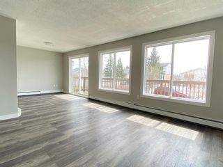 Photo 10: 425 Big Springs Drive SE: Airdrie Detached for sale : MLS®# A1087684